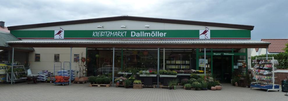 Kiebitzmarkt Dallmöller in Glandorf