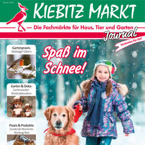 Kiebitzmarktjournal Winter