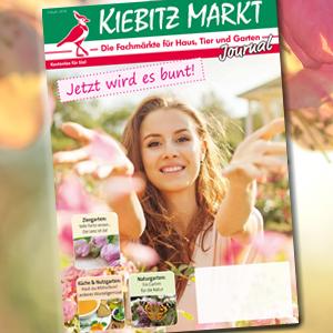 Kiebitzmarkt Journal Frühling