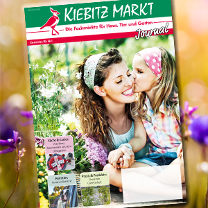 Kiebitzmarkt Journal Sommer
