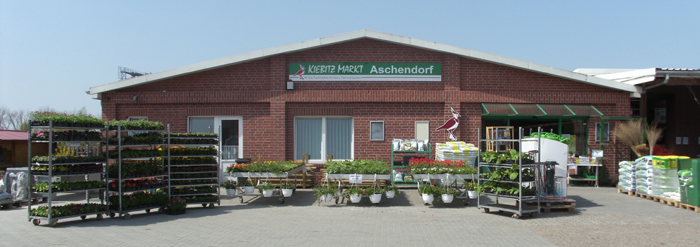 Kiebitzmarkt Aschendorf