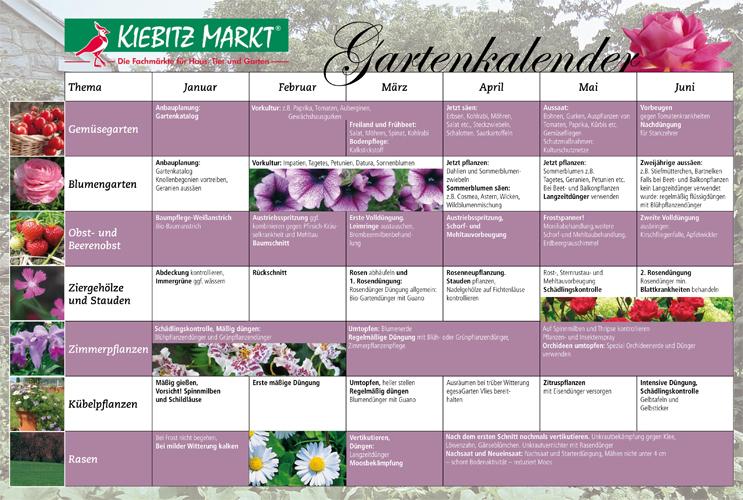 Kiebitzmarkt Die Fachmärkte Für Haus Tier Und Garten