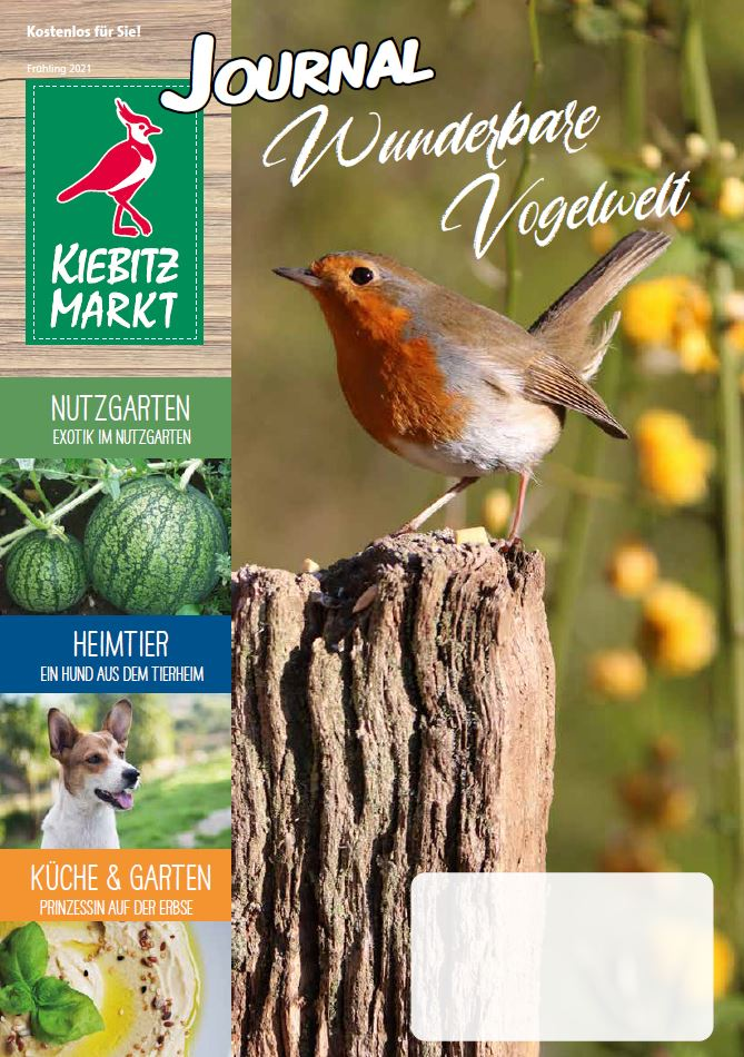 Kiebitzmarkt Journal