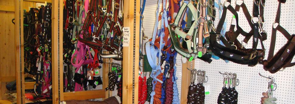 Pferd- und Reitsportbedarf in Ober-Mörlen