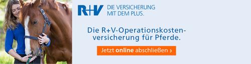 r_und_v_500