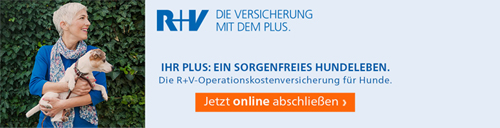 r_und_v_500_hund