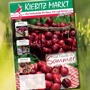 Kiebitzmarkt Journal Sommer